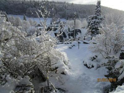 Haselbach im Winter