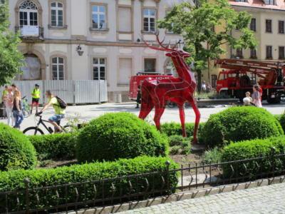 Ausflug nach Jelena Gora Polen